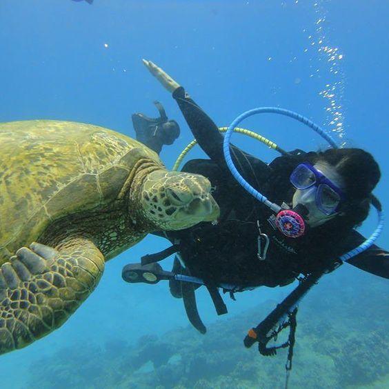 Faire un safari plongée Bali : quelles sont les règles à respecter ?
