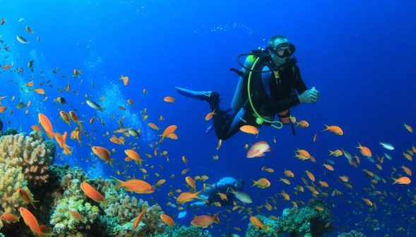 plongée amed Bali