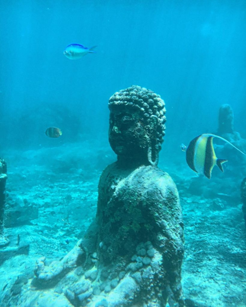 Rencontrez le Bouddha sous-marin de Bali à Plongée Nusa Penida